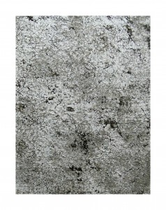 Grau 2, 2013, 76x58 cm, Acryl, Öl auf Holz